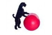 www.DyrenesMad.dk